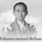 ในหลวงรัชกาลที่9 ธ สถิตย์ในดวงใจไทยนิรันดร์