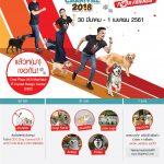 CDC Dog Carnival Ep.Hitz Fun Run for Friends